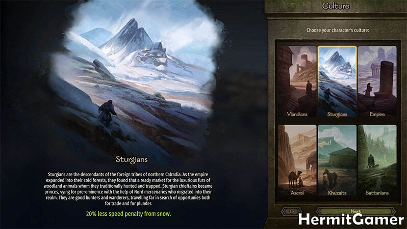 Mount & Blade 2 Bannerlord Setting