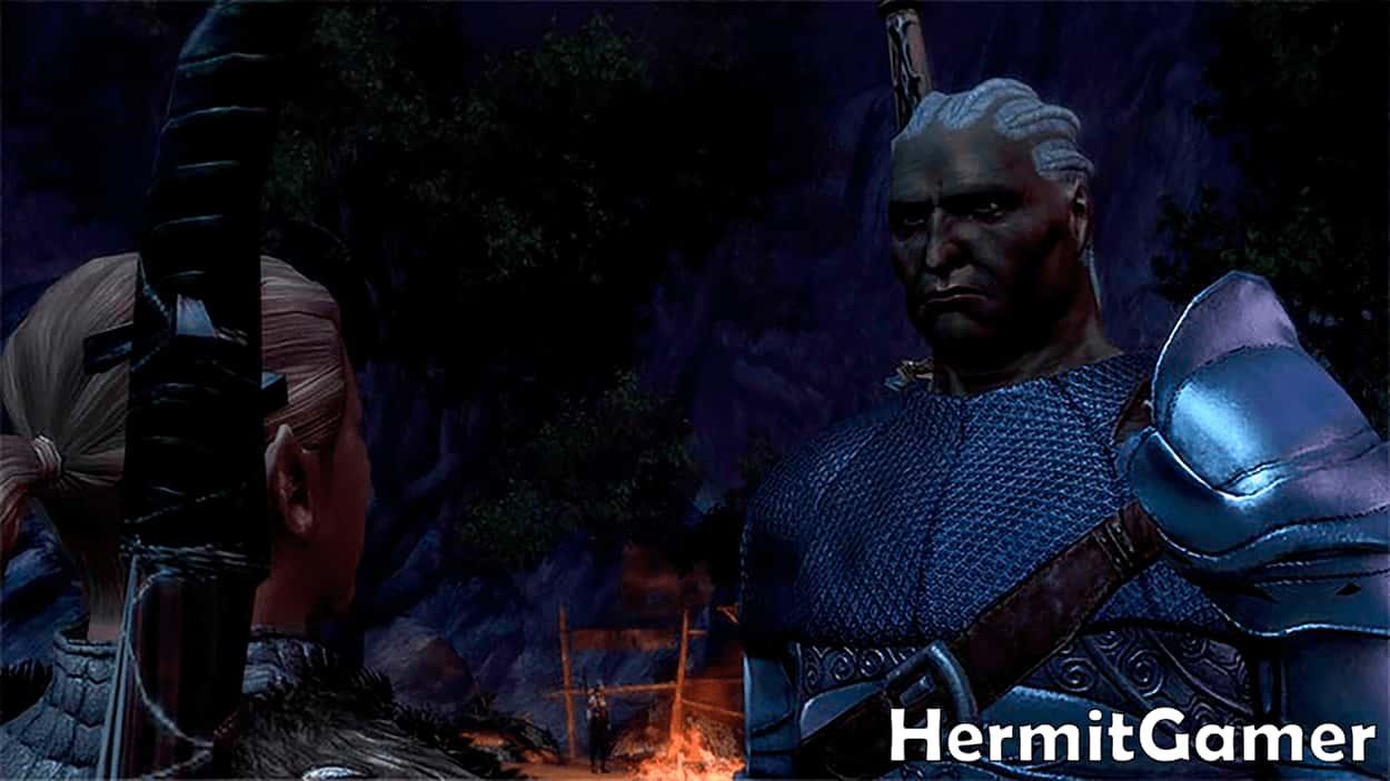 Stan Dragon Age Origins Companion